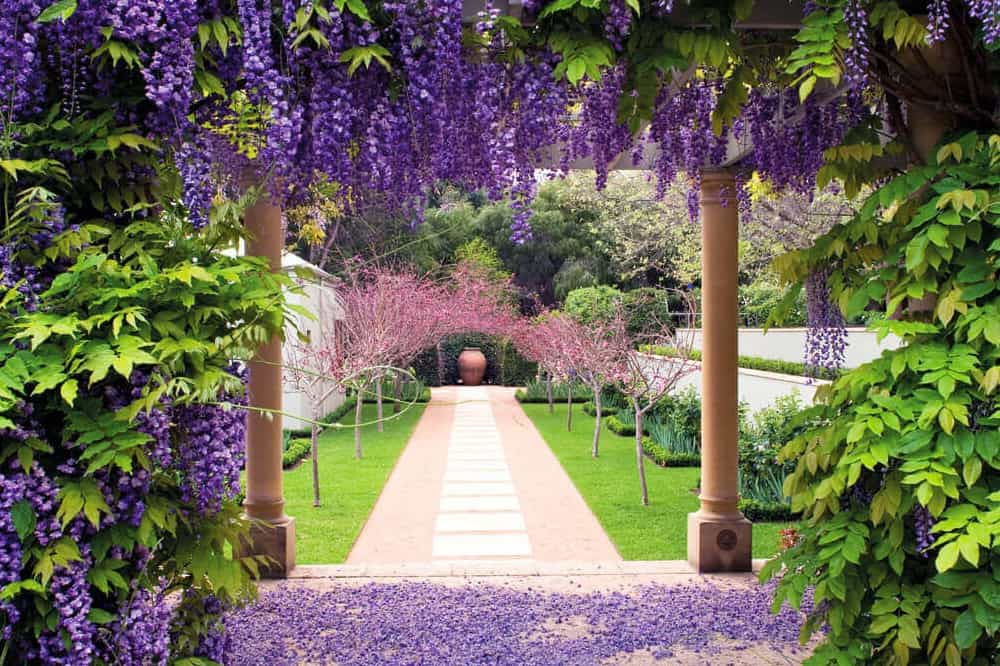Margaret River's Secret Garden